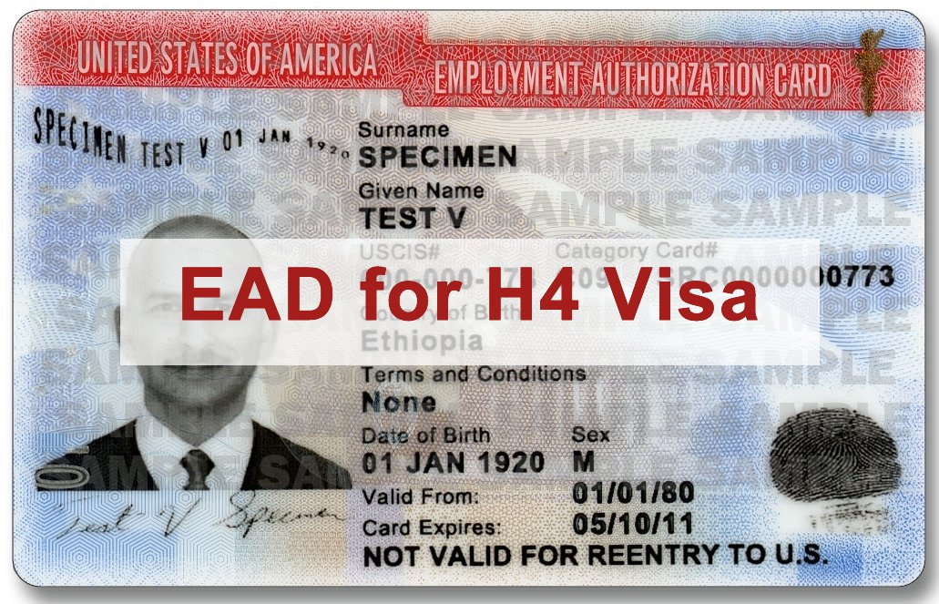 H-4 Spouses of H-1B Workers' Employment Authorization(EAD)