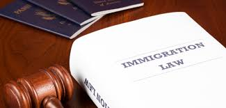 immigration law book image generic